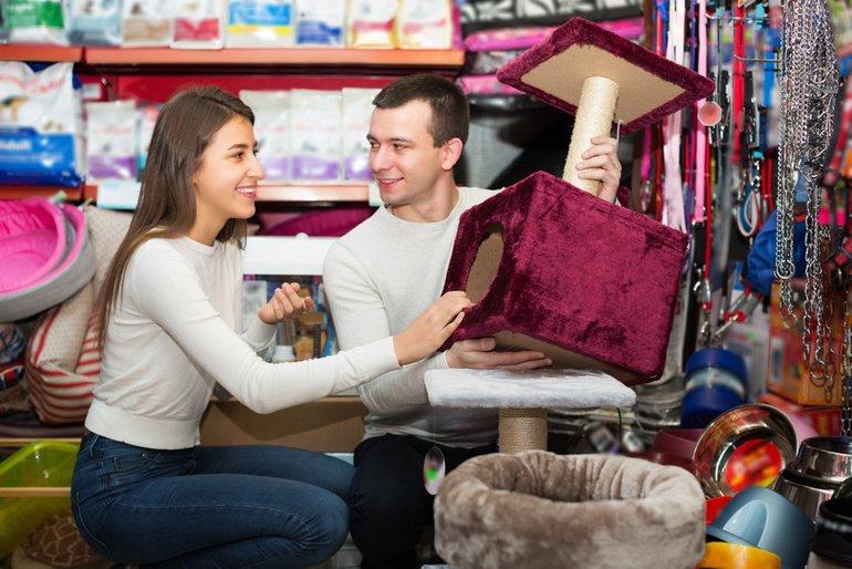 haltung tipps tricks zur katzenhaltung auf. Black Bedroom Furniture Sets. Home Design Ideas